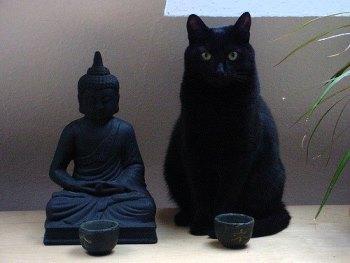 Статуэтка Будды и черная кошка