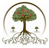 Три плодовых дерева