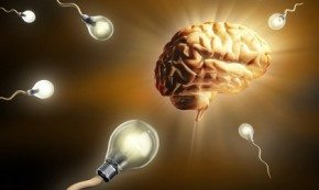 Мозг и лампы