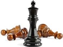 шахматы виды фигур