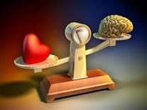 картинка мозги и сердце