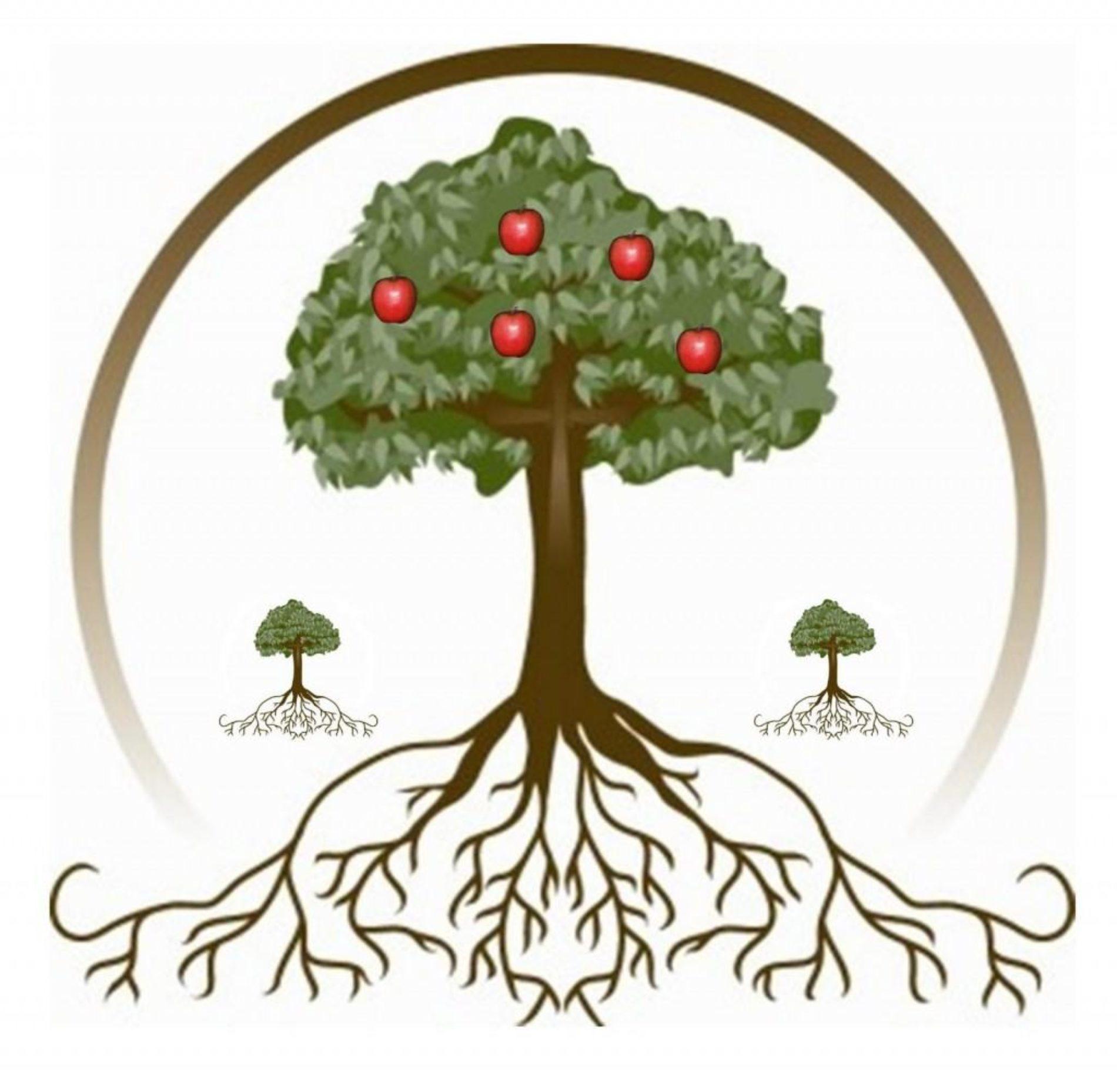 Каждому переговорщику — дерево в подарок!