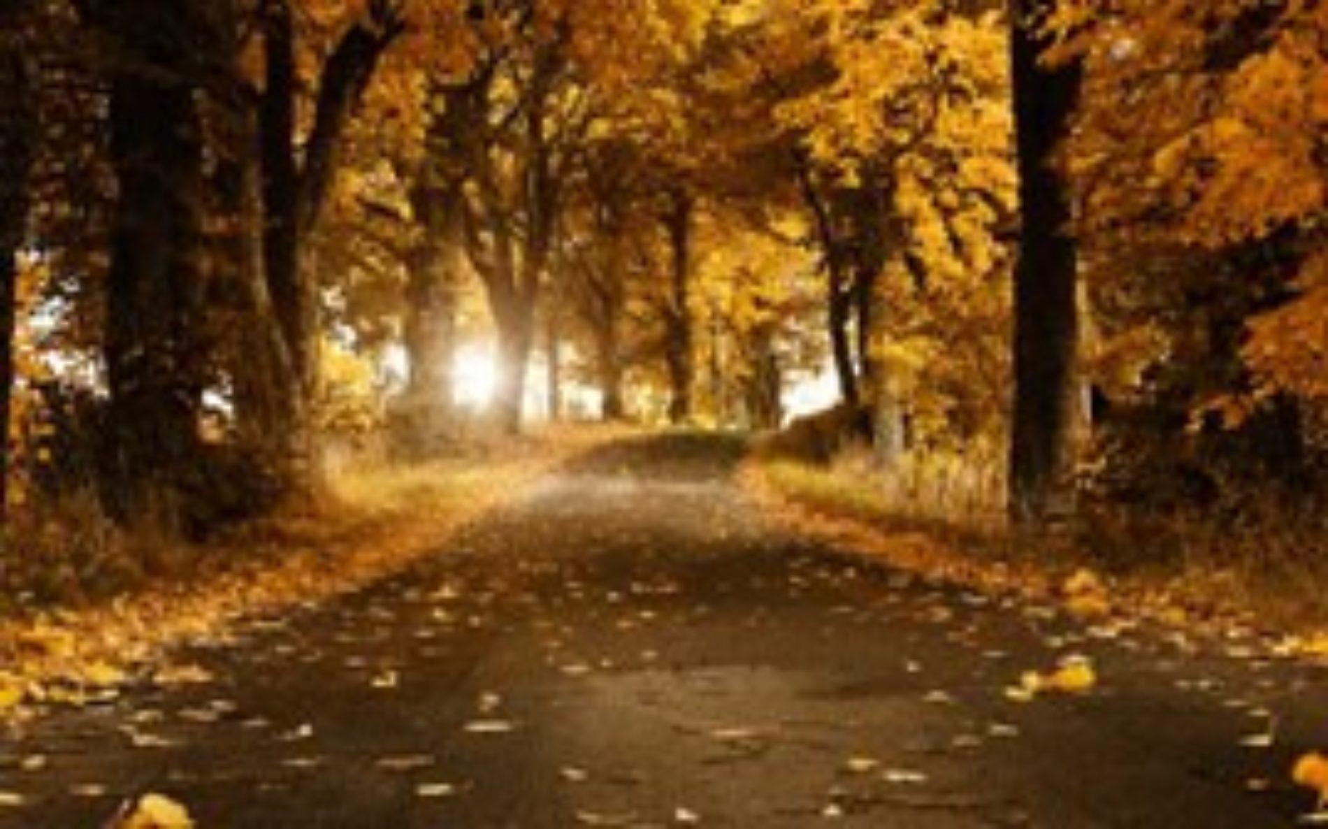 Осенняя страна